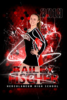 Herky Senior banners Winter sports